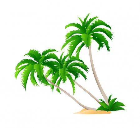 Vector icon palm tree