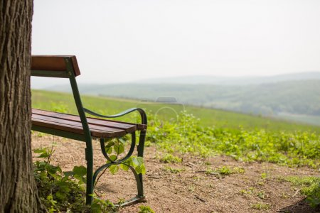 Photo for Lonely bench near tree with distant hills in the front - Royalty Free Image