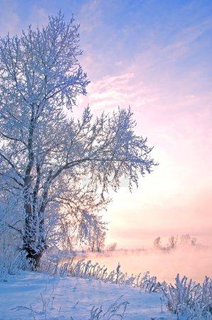 Photo pour Rivière hiver en Russie. Tatarstan Kama - image libre de droit