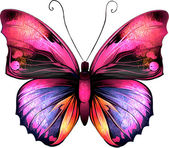 Bright Butterfly Isolated illustration on white background