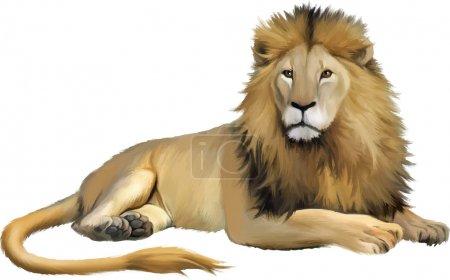 Illustration for Lying lion. Isolated realistic illustration on white background - Royalty Free Image
