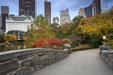 Photo pour Image de central park et le pont de gapstow à new york city, usa en automne. - image libre de droit