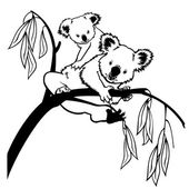 Koala with baby black and white