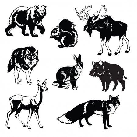 Set von Waldtieren schwarz und weiß