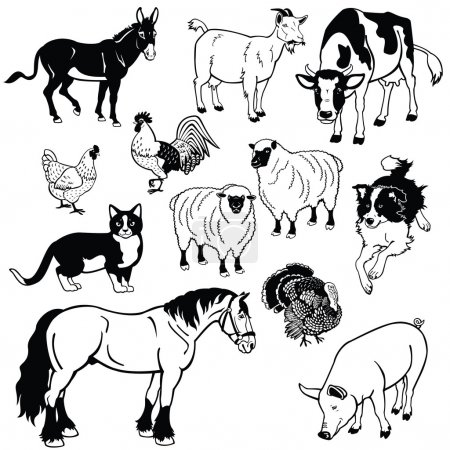 Set with domestic animals black and white images