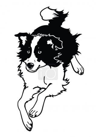 Running dog black and white