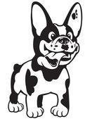 Cartoon french bulldog black white