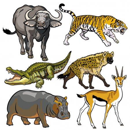 Photo pour Ensemble avec des objectifs africains, bêtes sauvages d'Afrique, photos isolées sur fond blanc, illustration vectorielle - image libre de droit