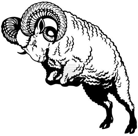 Ram black white