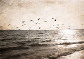 image in grunge style, sea
