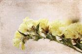 artwork in grunge style, flowers