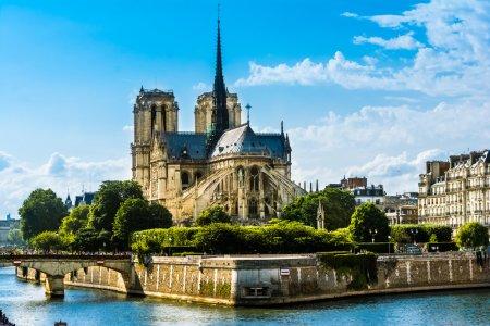 Photo pour Cathedrale notre dame de paris, notre Dame de paris est une cathédrale magnifique sur l'ile de la cité à paris, est un important exemple d'architecture gothique français, sculptures et vitraux. - image libre de droit