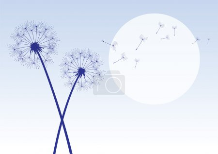 Blue dandelions with flying seeds