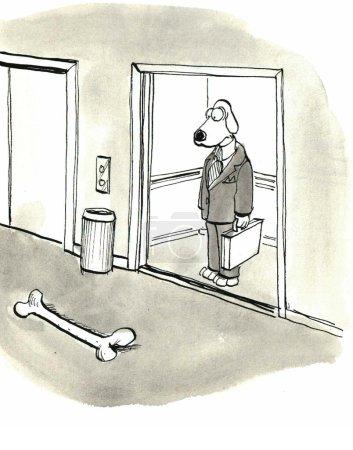 Dog sees a large bone