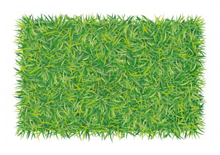 Illustration for An illustration of background with green grass - Royalty Free Image