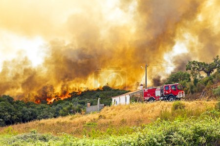 Huge forest fire threatens homes in Portugal