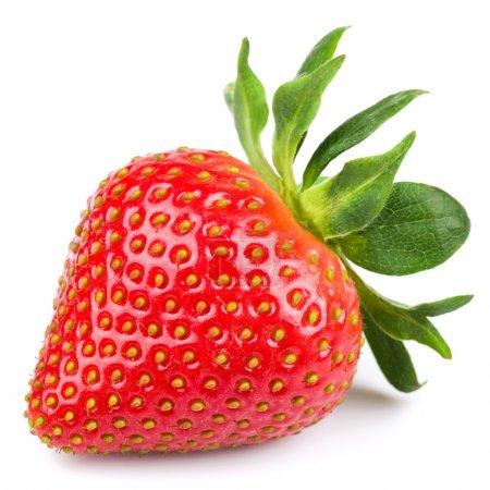 Photo for Fresh strawberry isolated on white background. Studio macro - Royalty Free Image