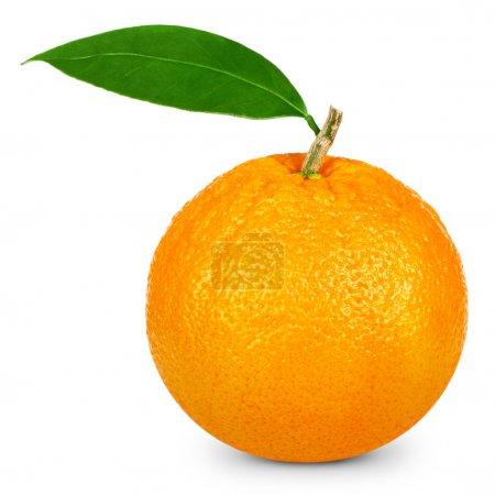 Photo for Ripe orange isolated on white background. Clipping Pat - Royalty Free Image