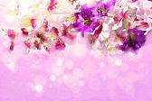Větve květin na lesklém pozadí Lila