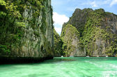 PHI PHI ZONE Is a popular activity : Areas to snorkel the coral