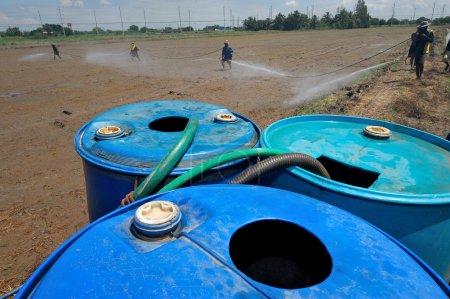 Farmer spary pesticide on the rice field...