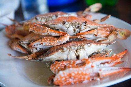 Photo pour Gros plan à la vapeur crabes bleus - image libre de droit