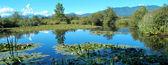 Panorama přírodní rezervace