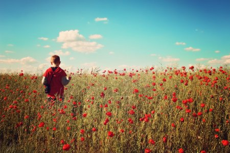 Photo for Little boy walking in the poppy field - Royalty Free Image