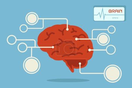 Brain, vector
