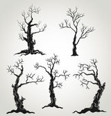 Black trees silhouette isolated on white background
