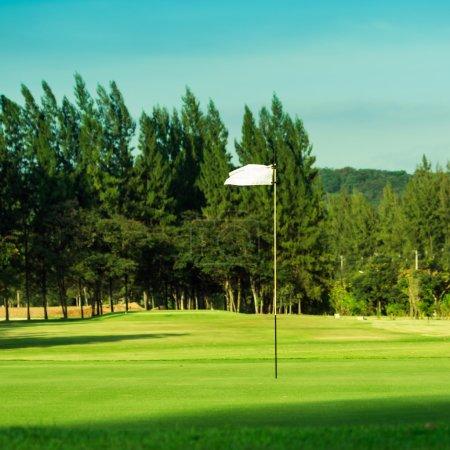 Photo pour Les arbres et l'herbe verte sur un terrain de golf . - image libre de droit