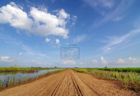 Photo for Scenery red dirt road forward. On the beautiful blue sky. - Royalty Free Image