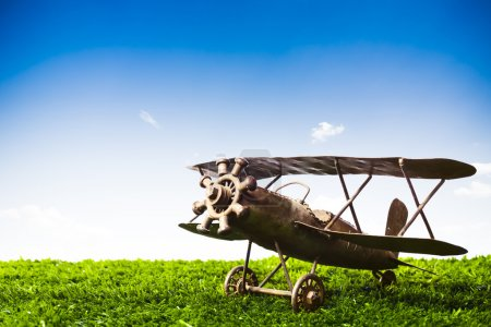 Toy Airplane on grass on a sunny day