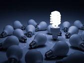 Lit compact fluorescent lightbulb standing amongst the unlit incandescent bulbs