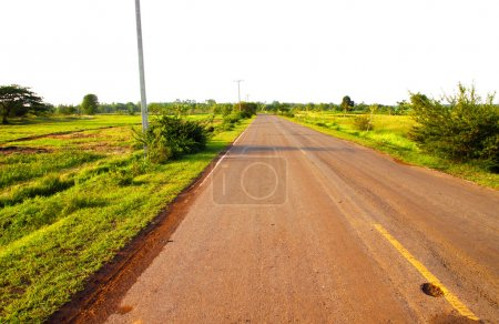 A country road running through green fields