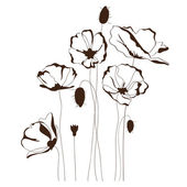 Poppy design floral background