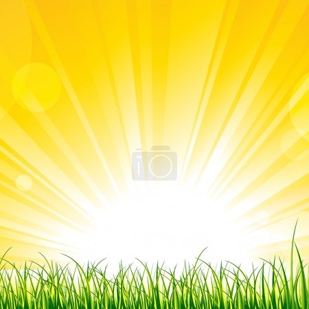 Grass on the Sunshine Rays