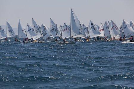 International Summer Regatta