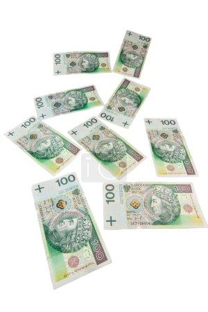 Flying polish zloty banknotes isolated on white background
