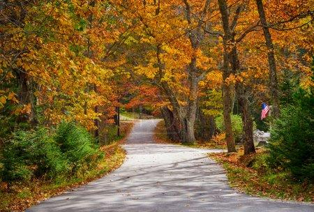 Photo pour Route de campagne sinueuse en automne avec drapeau patriotique sur le bord de la route - image libre de droit