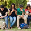 Group of teenage boys and girls ignoring each othe...