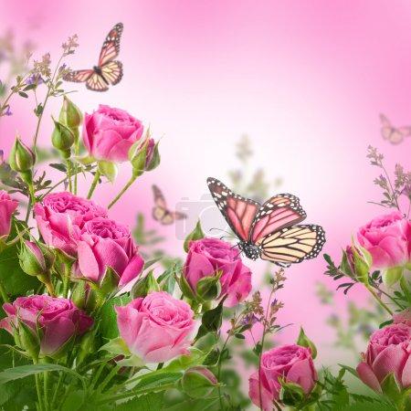 Photo pour Bouquet de roses délicates et papillon, fond floral - image libre de droit