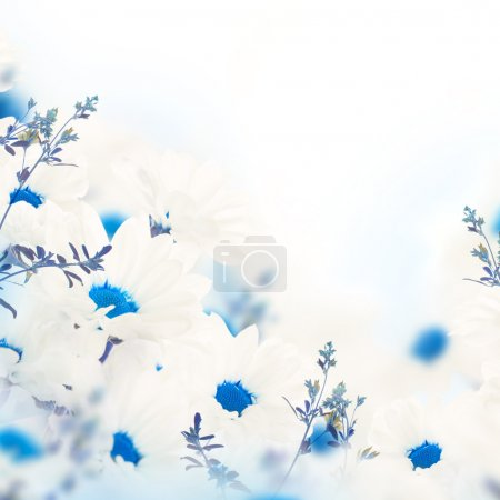 floral fond