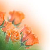 """Постер, картина, фотообои """"букет желтых роз"""""""