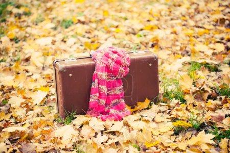 Valise Vintage avec une écharpe rose en automne parc