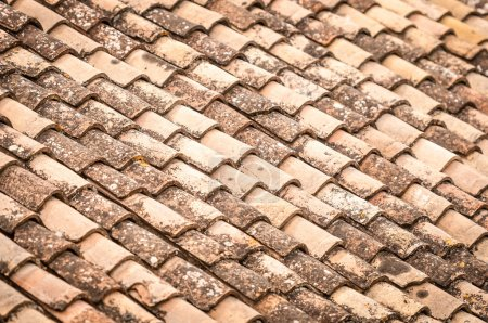 Roof tile with leaves and water in rows.