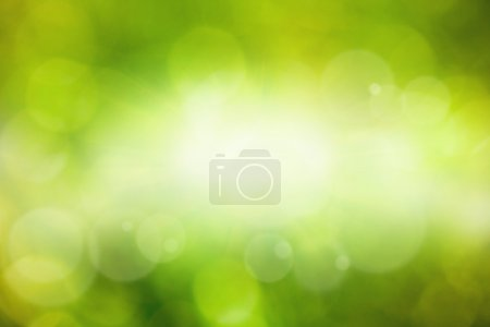 Photo for Abstract eco background - green leaves, grass, bright sun - Royalty Free Image