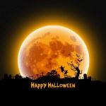 Happy Halloween message design background, vector ...