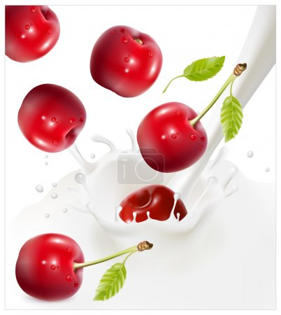 Illustration for Vector illustration. Ripe red cherries falling into the milky splash. - Royalty Free Image