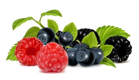 Forest berries.